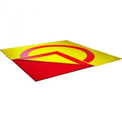 COLLEGE REVERSIBLE WRESTLING/JUDO MATS